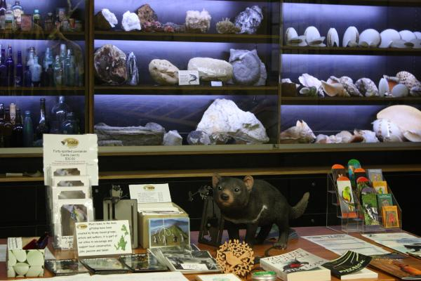 Display cases and merchandise on sale for wildlife care
