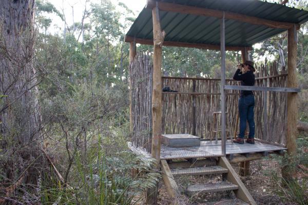Lyenna Cottage - Inala Nature Tours - Image Brad Moriarty (Pademelon Creative)