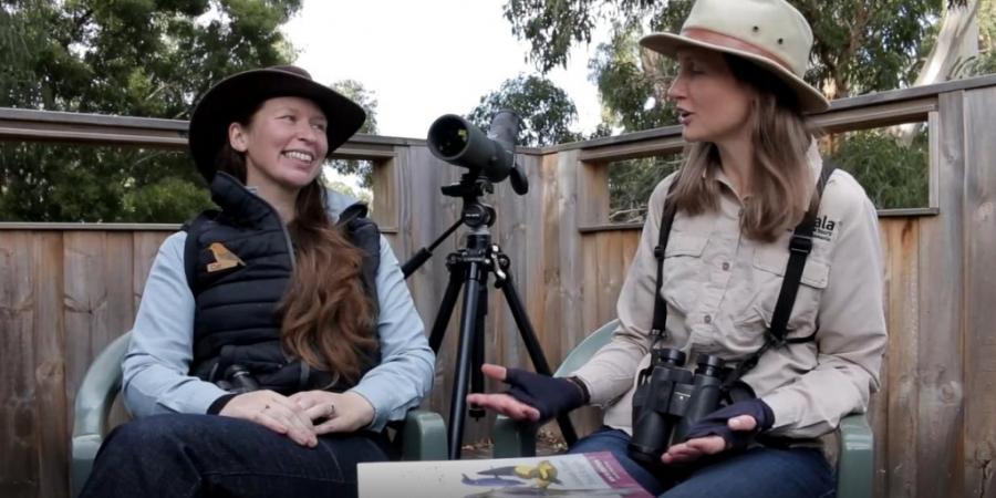 Inala Beginner Birdwatching Video