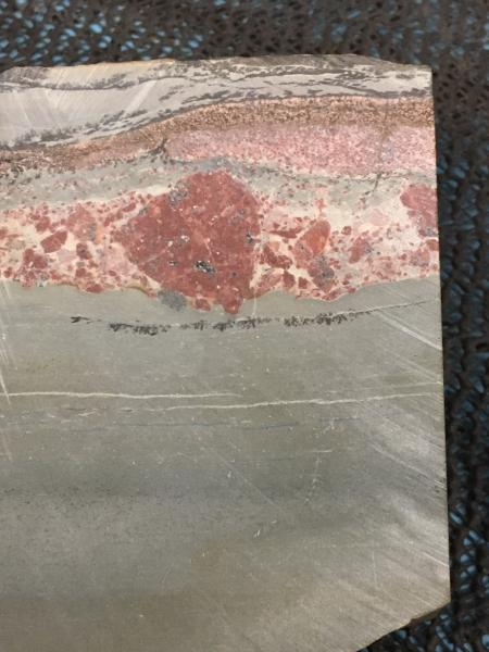 Cross Section Sandstone  - Tonia Cochran - Inala Nature Tours