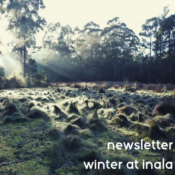Newsletter - Winter 2019 at Inala