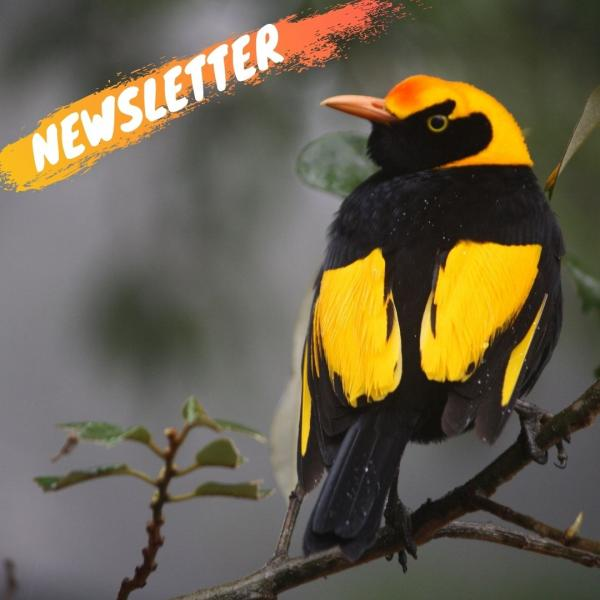 Inala Newsletter - News Tours and Events
